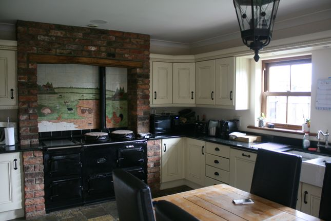 Thumbnail Detached house to rent in Ayton Road, Stokesley