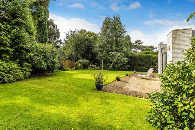Picture No. 14 of Hookwood Park, Limpsfield, Surrey RH8