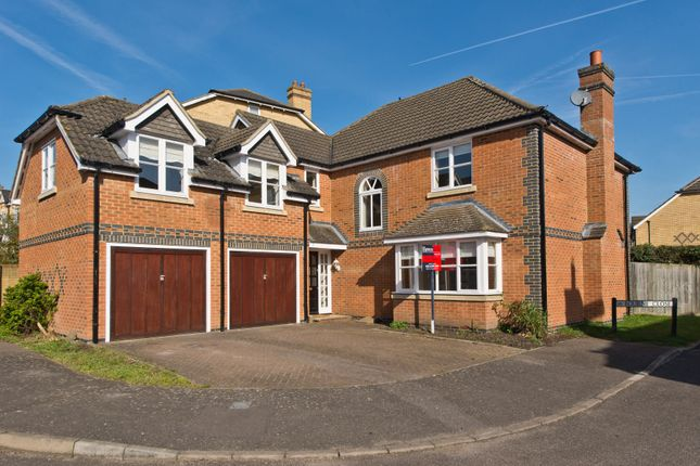 Thumbnail Property to rent in Bourne Close, Thames Ditton