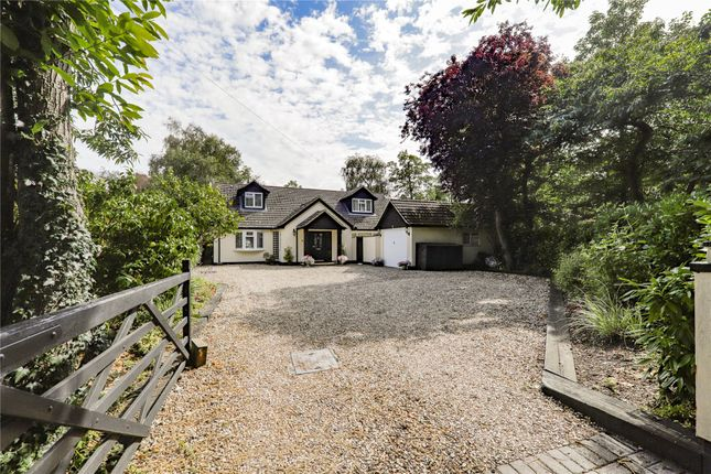 Thumbnail Detached house for sale in Forest Road, Hayley Green, Warfield, Berkshire