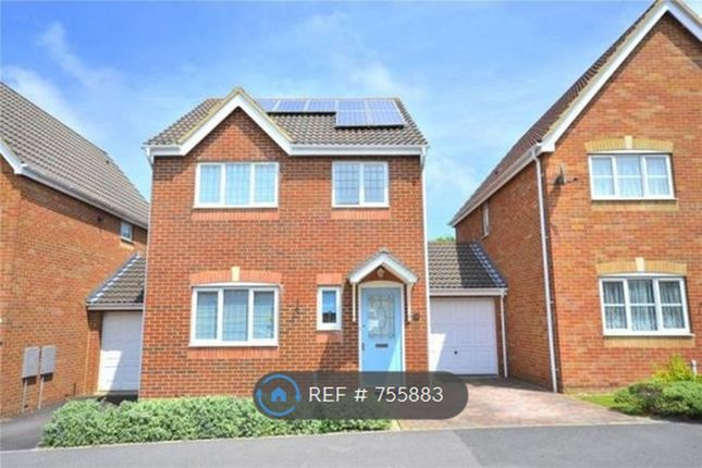 Thumbnail Detached house to rent in Longhill Drive, Salisbury
