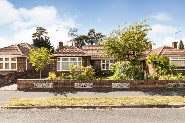 Thumbnail Bungalow for sale in Ascot, Berkshire