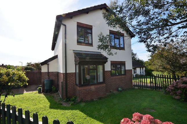 Thumbnail Property for sale in Steed Close, Hookhills, Paignton