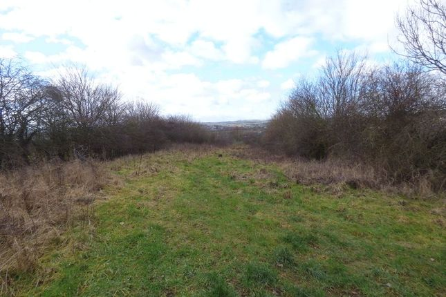 Thumbnail Land for sale in Springvale Road, Brimington, Chesterfield