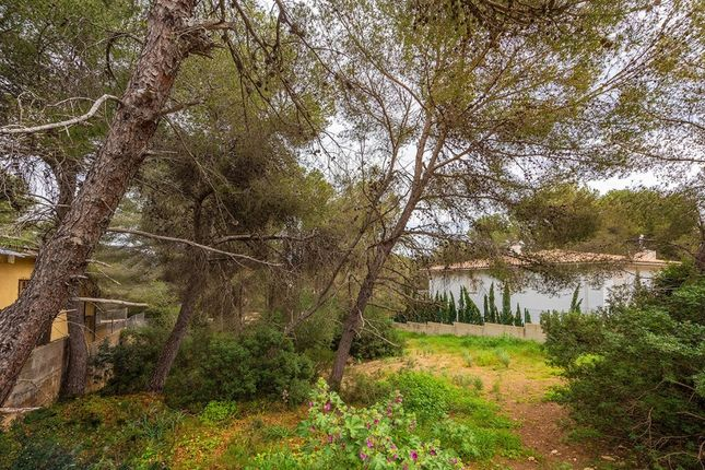 Land for sale in Spain, Mallorca, Calvià, Santa Ponsa