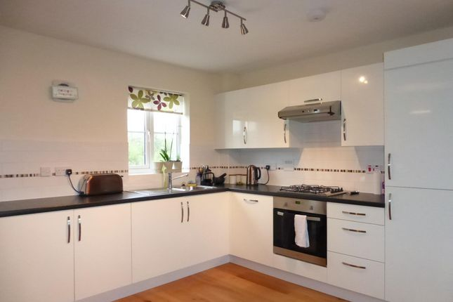 Thumbnail Flat to rent in Chaucer Grove, Exeter