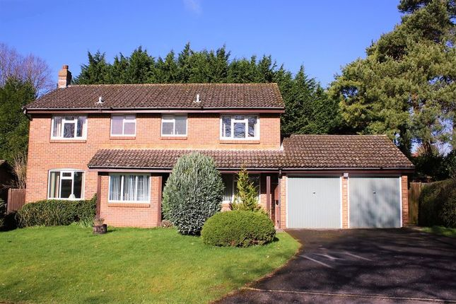 Thumbnail Detached house for sale in Hall Close, Bishops Waltham, Southampton