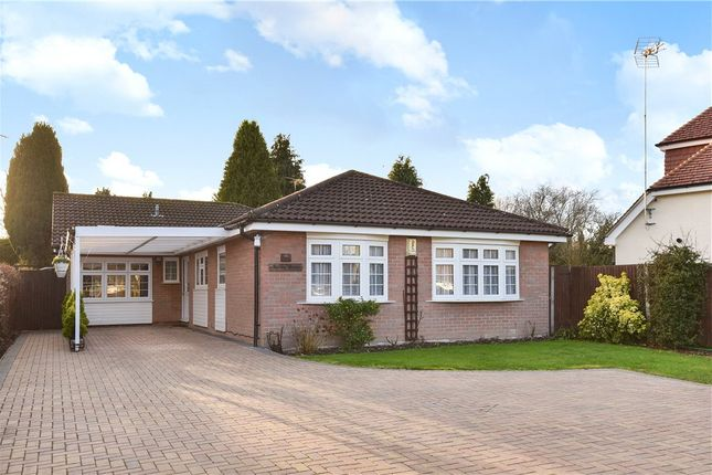 Thumbnail Detached bungalow for sale in Sandhurst Lane, Blackwater, Surrey
