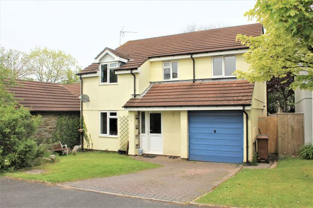 Thumbnail Detached house for sale in Higher Green, South Brent