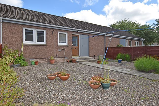 Thumbnail Terraced bungalow for sale in Grant Road, Blairgowrie