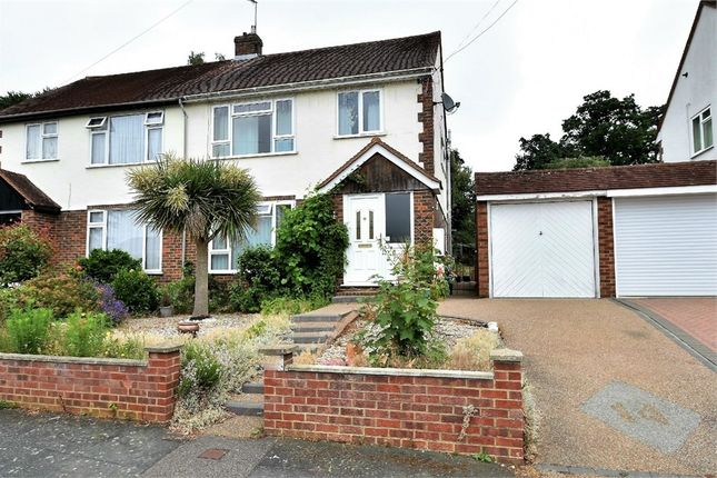Thumbnail Semi-detached house for sale in Wilderness Road, Frimley, Camberley, Surrey