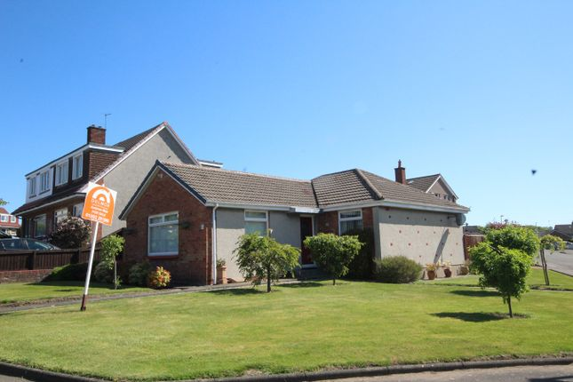 Thumbnail Detached bungalow for sale in Barassie Drive, Kirkcaldy, Fife