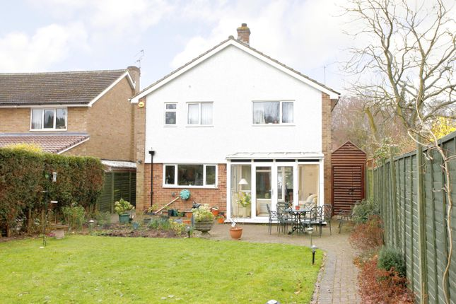 Thumbnail Detached house to rent in The Spinney, Beaconsfield