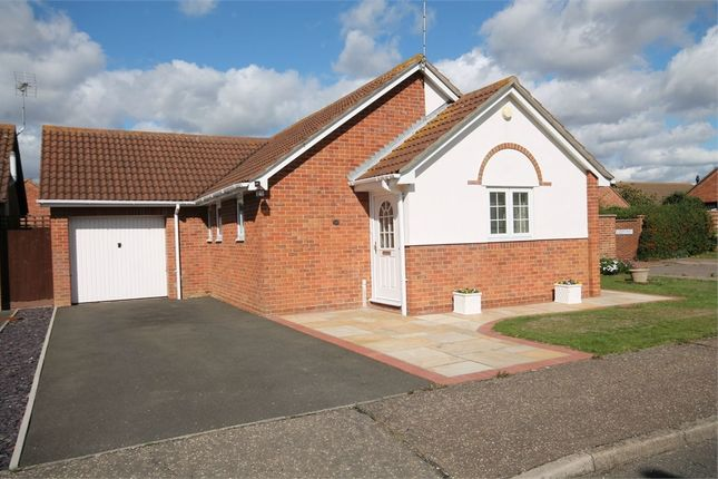 Thumbnail Detached bungalow for sale in Stallards Crescent, Kirby Cross, Frinton-On-Sea