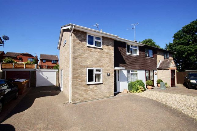 Thumbnail Semi-detached house for sale in Swallowdale, Colchester