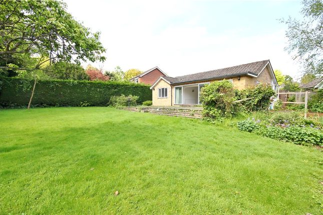Thumbnail Detached bungalow for sale in The Retreat, Englefield Green, Surrey
