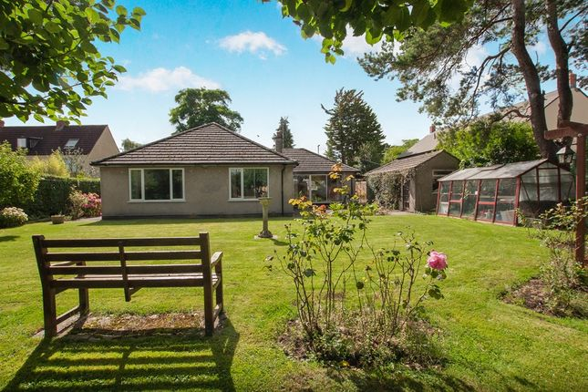 Thumbnail Detached bungalow for sale in Cotswold Road, Chipping Sodbury, Bristol