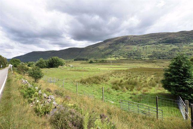 East Of Carn Mor, Balnacra, Strathcarron IV54