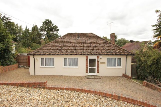 Thumbnail Bungalow to rent in The Drive, New Barn, Longfield