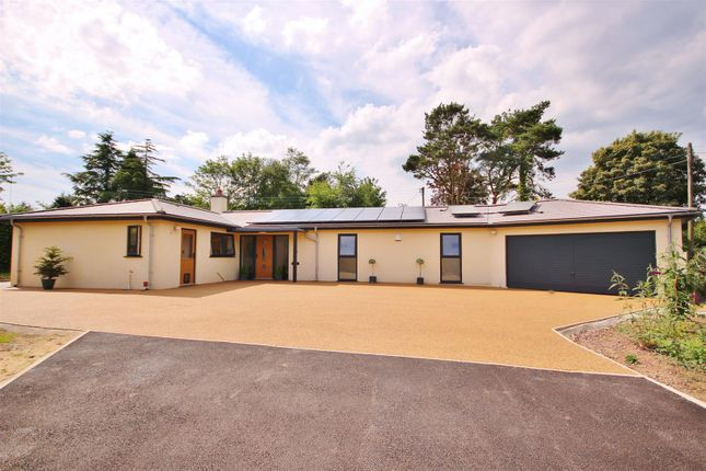 Thumbnail Detached bungalow for sale in Green Lane, Axminster