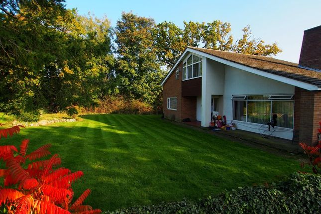 Thumbnail Detached house for sale in Chapel Street, Barford, Norwich