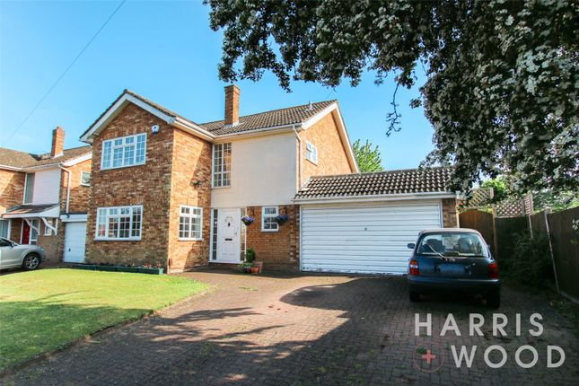 Thumbnail Detached house for sale in Elianore Road, Colchester