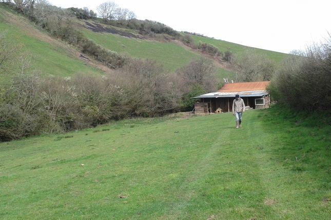 Thumbnail Land to rent in Frog, Kingsbridge