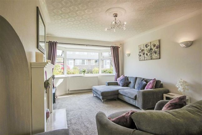 Thumbnail Semi-detached house for sale in Essex Road, Rishton, Blackburn