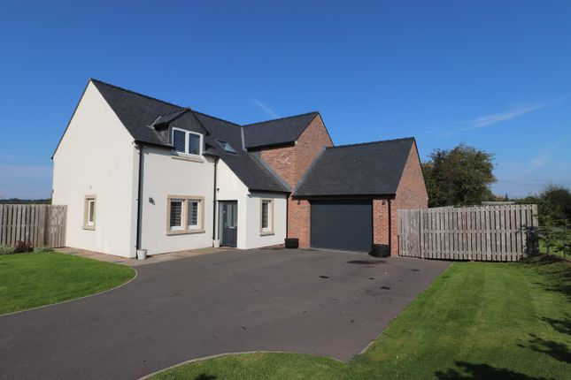 Thumbnail Detached house for sale in Honeypot Meadow, Cargo, Carlisle