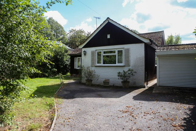 Thumbnail Detached bungalow to rent in Hartfield Road, Forest Row