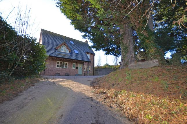 Thumbnail Property for sale in Pyebush Lane, Acle, Norwich
