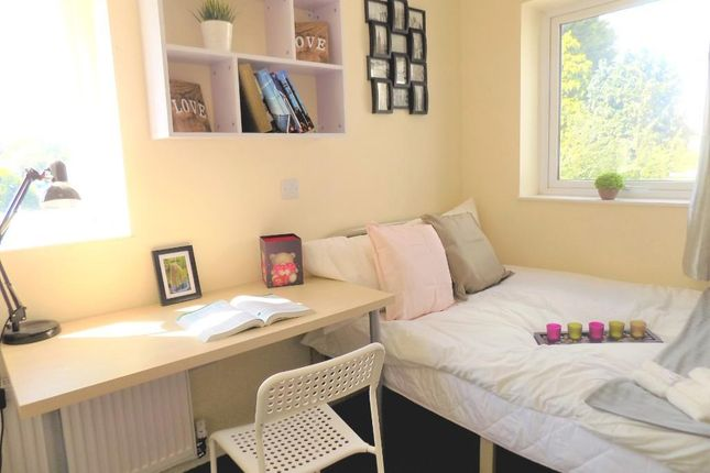 Thumbnail Shared accommodation to rent in Sheriff Avenue, Coventry