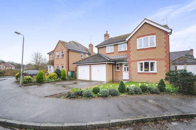 Thumbnail Detached house for sale in The Wrens, Thetford