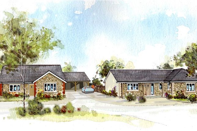 Thumbnail Detached bungalow for sale in Main Street, Ilton, Ilminster, Somerset