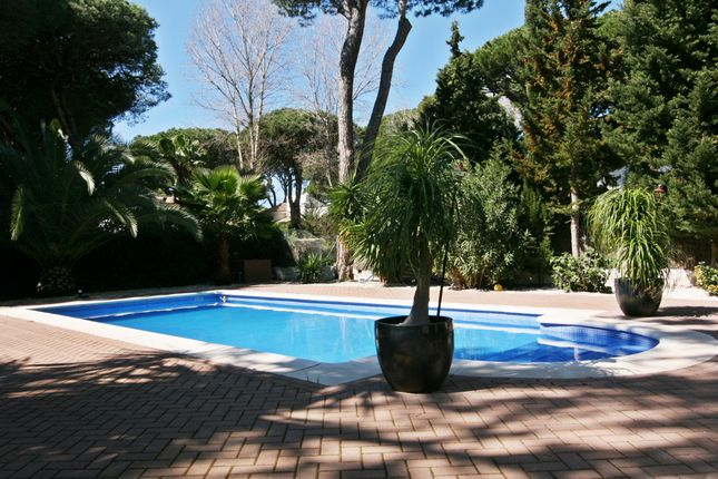 Private Pool of Roche, Conil De La Frontera, Cádiz, Andalusia, Spain