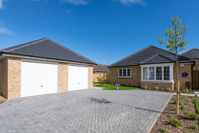 Thumbnail Detached bungalow for sale in Langford Close, Horsemere Green Lane, Climping, West Sussex