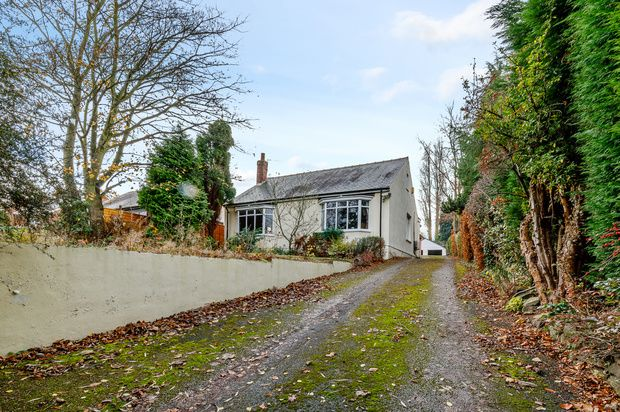 Thumbnail Bungalow for sale in George Lane, Wakefield