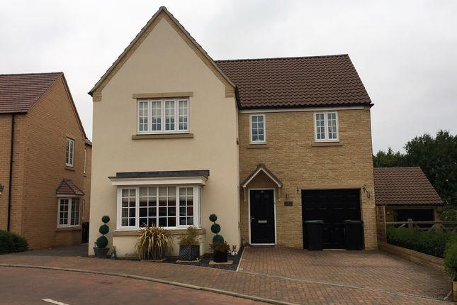 Thumbnail Detached house to rent in Oak Lane, Kings Cliffe