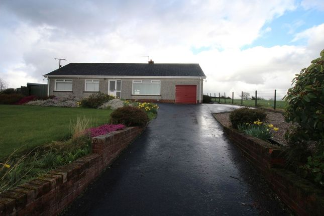 Thumbnail Bungalow to rent in Ballymullan Road, Lisburn