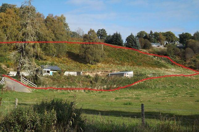 Land for sale in Inchnavie Lower, Newbridge, Ardross, Alness