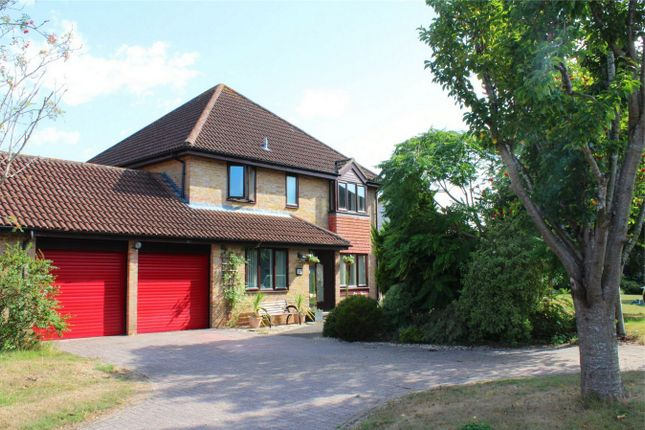 Thumbnail Detached house for sale in Killams Crescent, Taunton, Somerset