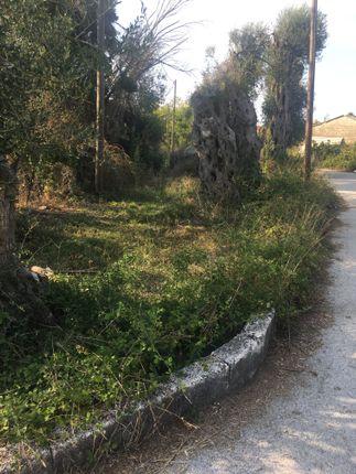 Lefkimmi Corfu, Ionian Islands, Greece