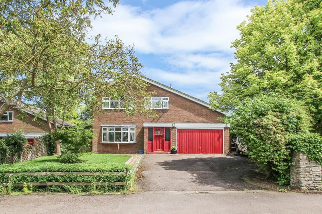 Thumbnail Detached house for sale in Clifton Road, Newton Blossomville