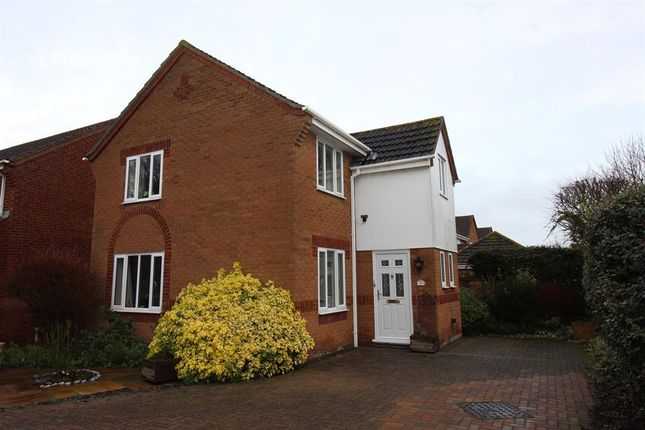 Thumbnail Detached house for sale in Steggles Drive, Roydon, Diss