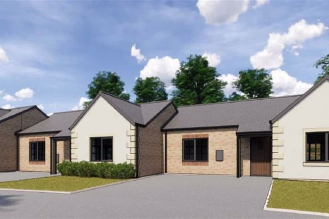 Thumbnail Terraced bungalow for sale in Fulwell, Fellside Development, Chipping