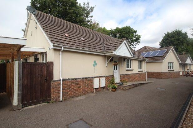 Thumbnail Bungalow to rent in Charlton Lane, Bristol