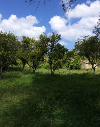 Land for sale in Lefkimmi Molos, Corfu, Ionian Islands, Greece