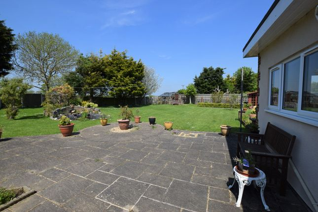 Rear Garden of Arundel Close, Pevensey Bay BN24