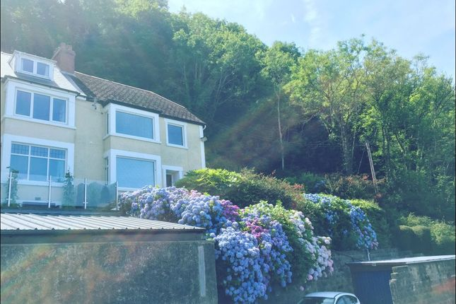 Thumbnail Semi-detached house to rent in New Quay, New Quay