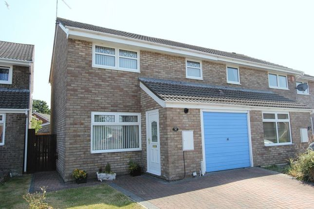 Thumbnail Semi-detached house for sale in Harding Close, Boverton, Llantwit Major